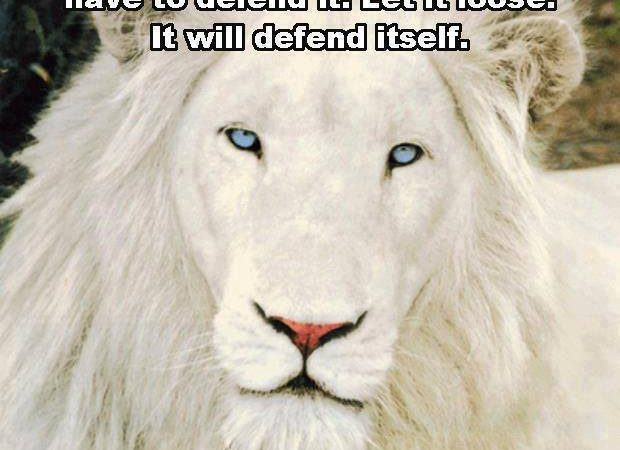 The truth is like a lion, you don't need to defend it…