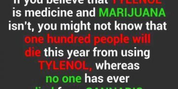 Tylenol marijuana comparrison