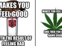 Vodka Vs Weed meme