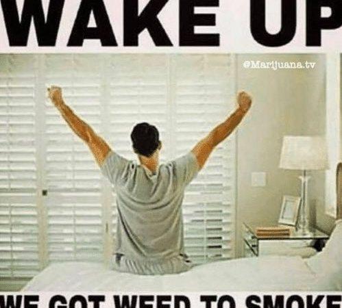 Wake up, we got weed to smoke