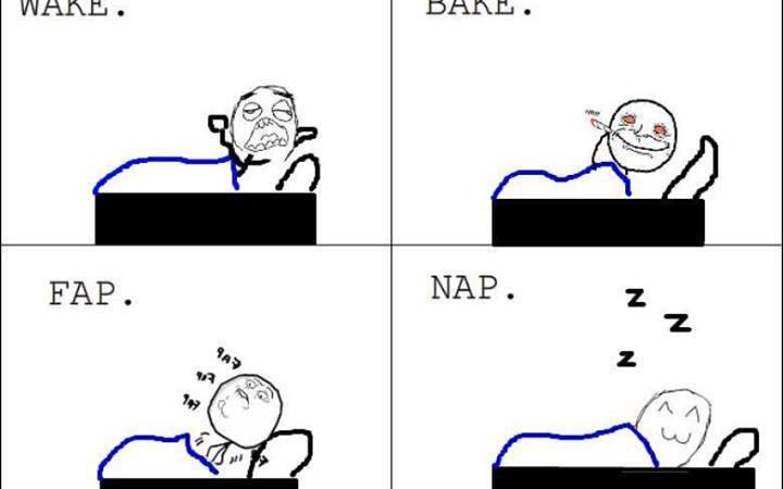 Wake, bake, fap, nap!