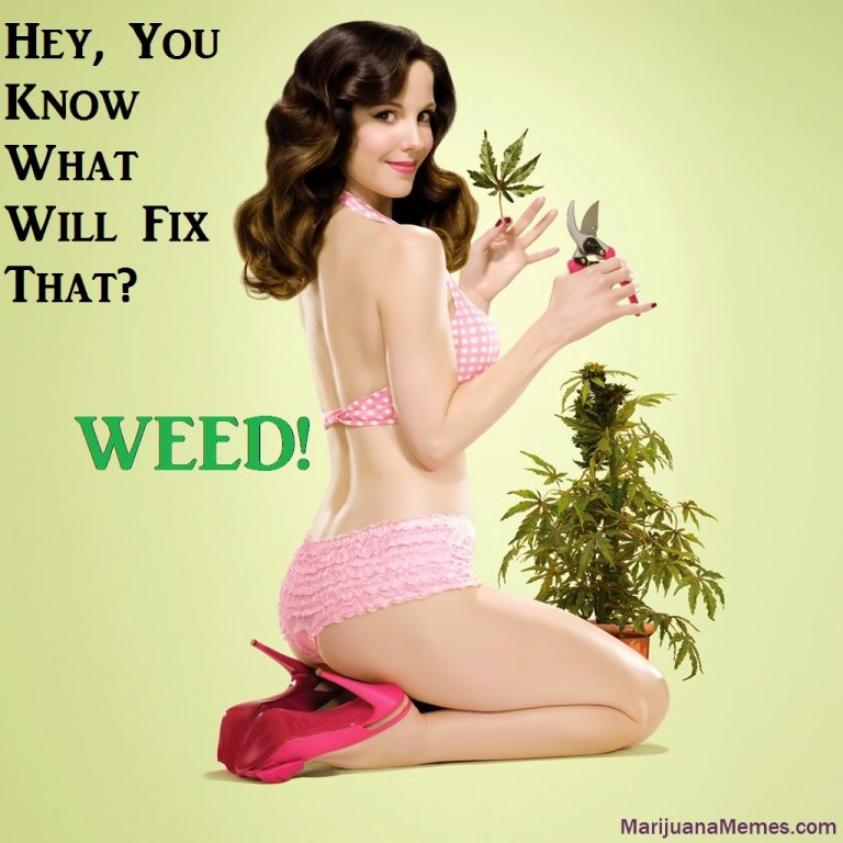 weed fixes everything weeds nancy botwin
