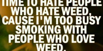 marijuana love hate drugs meme