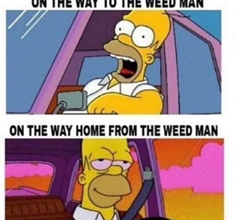 Going to The Weedman's House