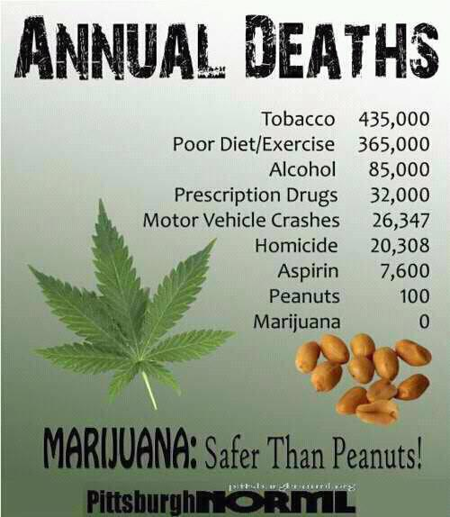 weed deaths safer option