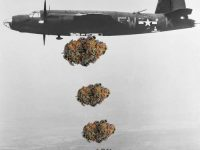 drop bud not bombs