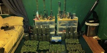 weeks supply of pot