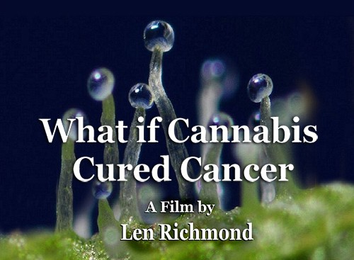 What If Cannabis Cured Cancer Documentary (2010)