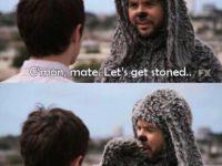 stoner dog meme wilfred