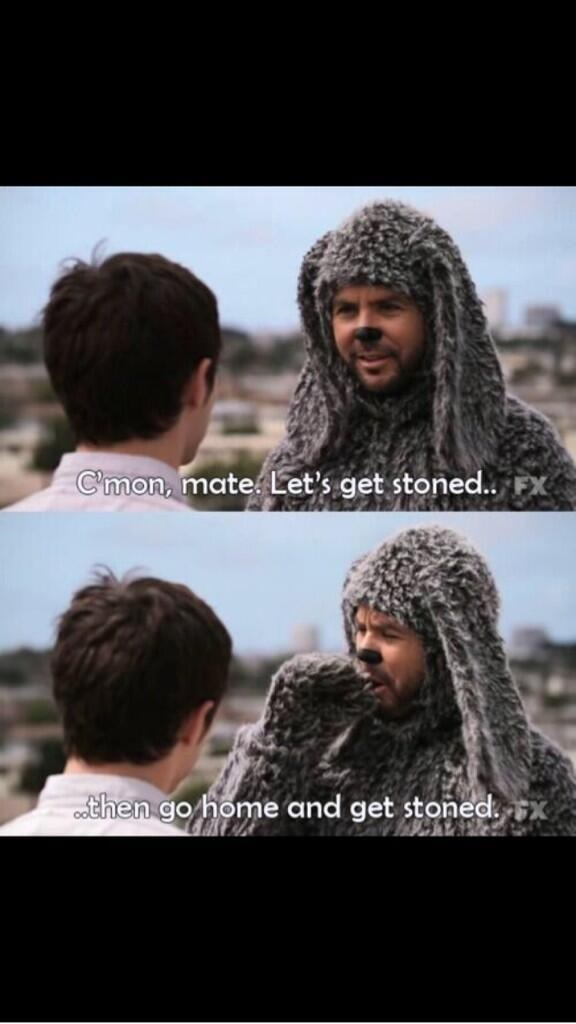 stoner dog meme wilfred