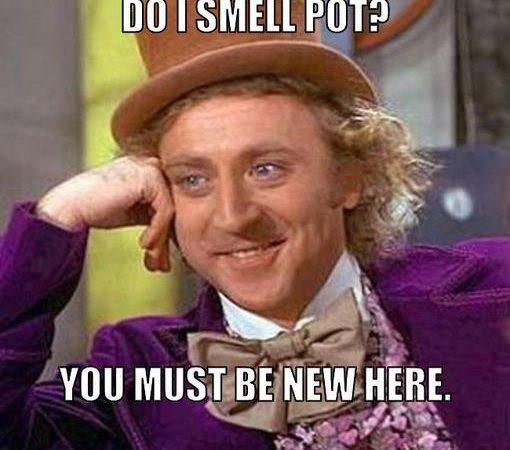 Do I Smell Pot?
