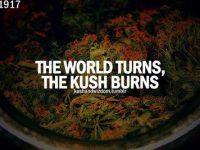 As The World Turns The Kush Burns meme