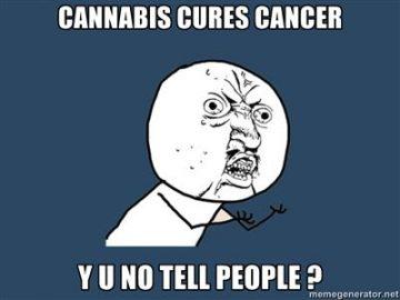 y u no meme marijuana kills cancer cells